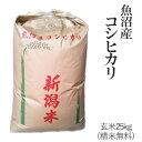 令和元年産魚沼産コシヒカリ玄米25kg / 白米4.5kg×...