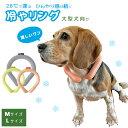 冷やリング HEALTHY ANIMALS(ヘルシーアニマルズ)クールリング アイス 犬 ペット 冷感 接触冷感 暑さ対策 熱中症対策 お散歩 散歩 大型犬 人用 M L 小さめ リング 首