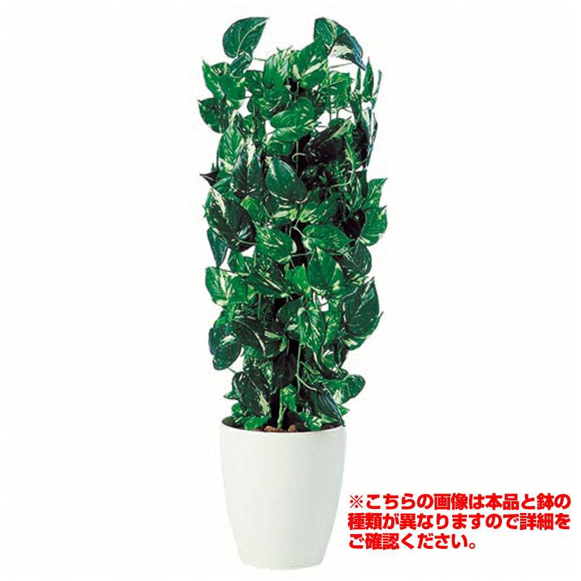 観葉植物 人工 樹木 ポトスヘゴ 高さ900mm SSサイズ 鉢:懸崖6号