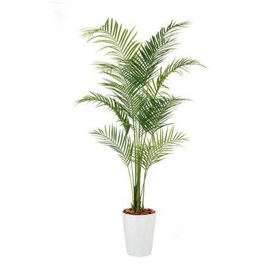 観葉植物 人工 樹木 アレカヤシPE 高さ2000mm LLサイズ 鉢:クオーツ300