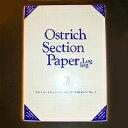 オストリッチ A4 両対数方眼紙 厚ブルー100枚パック 2211