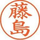シヤチハタ ネーム9既製 XL-9 1749 藤島