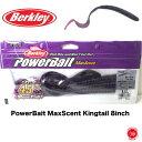 20%off Berkley / е╨б╝епеьед б┌ PowerBait MaxScent Kingtail 8inch / енеєе░е╞б╝еы 8едеєе┴едеєе┴ б█ е╨б╝епеьб╝ ╠┌┬╝╖·┬└ енере▒еє б╩┬х░·дн╔╘▓─ епеъе├епе▌е╣е╚ / ╞▒║н╚п┴ў▓─б╦