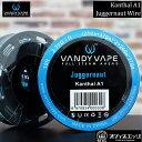 ベイプ VANDY VAPE【Kanthal A1 Juggernaut Wire(28ga 37ga)×2 24ga×37ga 10ft】ジャガーノート ワイヤー vandyvape バンディーベイプ 電子たばこ リビルダブル ビルド X-24