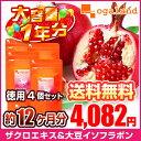 お徳用ザクロエキス&大豆イソフラボン(4個セット・約1年分)◆1年分◆ 送料無料 サプ