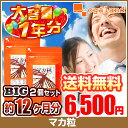 BIGマカ粒(2個セット・約1年分)◆1年分◆ 送料無料 サプリ サプリメント マカ 粉末 を