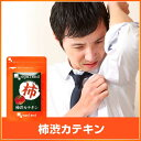 柿渋カテキン(約3ヶ月分)送料無料 サプリメント サプリ 体...