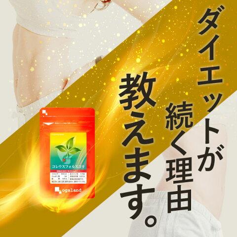 コレウスフォルスコリ ダイエット サプリ 約1ヶ月分 イヌリン 送料無料 食物繊維 サプリメント 【KEEP】 _在管