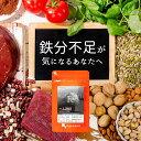 ヘム鉄粒(約6ヶ月分) 送料無料 鉄 鉄分 サプリ ミネラル...