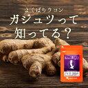 ガジュツ 紫ウコン うこん 粒(約3ヶ月分)送料無料 1,0...
