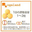 コエンザイムQ10配合サプリメント 補酵素 美容 エ...