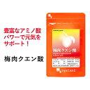梅肉 クエン酸(約3ヶ月分)送料無料 クエン酸 配合 梅肉エキス アミノ酸 サプリメン