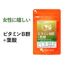 ビタミンB群+葉酸(約3ヶ月分)送料無料 サプリメント サプ...