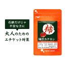 【20%ポイントバック】柿渋カテキン(約6ヶ月分)送料無料 ...