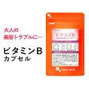 【エントリーでポイント最大10倍】ビタミンB カプセル(約3...