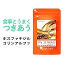 ホスファチジルコリンα(約3ヶ月分)送料無料 サプリメント サプリ オーガランド 亜麻仁油 オメガ3 脂肪酸 アマニ油 レシチン  _JD