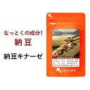 納豆キナーゼ(約3ヶ月分)送料無料 サプリ 納豆菌 ダイエッ...