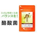 酪酸菌(約1ヶ月分) サプリ送料無料 オリゴ糖 乳酸菌 ビフ...