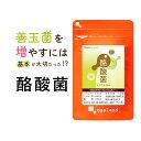 【クーポンで20%OFF】酪酸菌(約1ヶ月分) サプリ送料無...