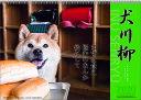 【エントリーでポイント10倍】2018年8月 月間優良ショップ受賞!2020年 カレンダー 犬 犬川柳 月めくり 9月より発売開始1000109210