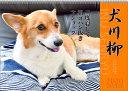 【エントリーでポイント10倍】2018年8月 月間優良ショップ受賞!2020年 カレンダー 犬 犬川柳 コーギー川柳 月めくり 9月より発売開始 1000109213
