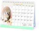 2021年 仔猫(卓上)カレンダー 1000115879 vol.021