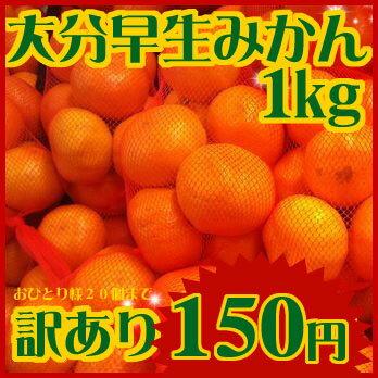 오이타현산 조생 귤~(뜻)이유 있어 가정용 약 1 kg150엔으로 20개까지 좋아할 뿐(만큼) 아무쪼록!~ 나의 슈퍼가 가계 응원해 버립니다!
