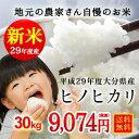 .【送料無料】平成29年産(新米)今だけ価格!大分県産 ヒノ...