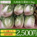 【送料無料】九州(大分、熊本、長崎 )産 白菜 1箱(5?6株入り)約13kg【同梱包不可】