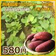 ショッピング苗 熊本県産 シルクスイート苗 1束20本入り(5月上旬出荷予定)