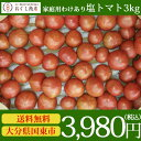.【送料無料】糖度7.5度以上!大分県国東市来浦で栽培した「塩トマト」家庭用わけあり塩トマト 3kg箱(満杯詰)【代引き不可】