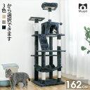 【感謝祭×P10倍】キャットタワー 大型猫 キャットタワー ...