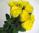 バライエロー(ゴールディ(Yなど5本 切花 生け花 花材 ドライフラワーに最適