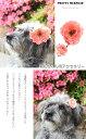 わんちゃん用(ペット用)アクセサリー グルーミング アーティフィシャル 造花 フラワー 高級 ギフト 【メール便】
