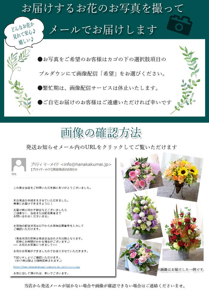 バラ30本とグリーンの花束 カラフルMIX 送...の紹介画像2