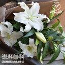 カサブランカ 誕生日 結婚 ウエディング 敬老の日 祝い プレゼント プレゼント ギフト 花束 15輪 花 ギフト フラワー…