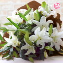 花 誕生日 母の日 ギフト 生花 お礼 歓送迎 ◆カサブランカ25輪とグリーンの花束 母の日 彼岸