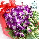 華やか洋蘭 デンファレ花束 デンファレとグリーンの花束 供花...