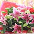花 誕生日 結婚祝い プレゼント ギフト 大輪系ピンクユリとグリーンの花束25輪 送別 退職 フラワーギフト 誕生日 女性 母 妻