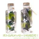 ボトルメッセージもOK ハーバリウム Herbarium [植物標本]ヒーリングボトル プリザーブドフラワー インテリア 誕生日祝 結婚祝い 自分へのご褒美に