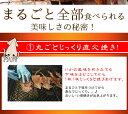 「160g直火焼するめ」【メール便発送】【するめい...