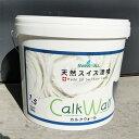 スイス天然漆喰 カルクウォール 1.5ミリ(内・外装用) 2...