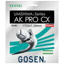 ゴーセン GOSEN ts761-na テニス ウミシマ AK プロ CX 17