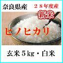 お米5kg ひのひかり(玄米) (白米)送料無料 28年産奈良県産ヒノヒカリ玄米から精米選択可能