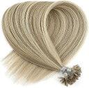 人毛 ウィッグ チップ U エクステ エクステンション 髪の毛 40cm長さ 25本(P14-24K, 20inch)