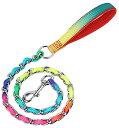犬 リードカラフル チェーン 鎖 ペット用品 ファッションリード 1mx3cm しつけ ハンドル付き