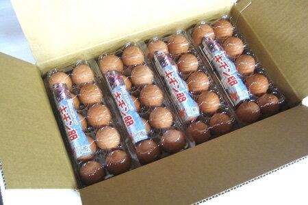 【北海道産】【キチン卵40個(10個入×4パッ...の紹介画像3