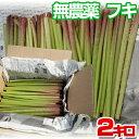 無農薬 天然 朝穫りフキ 約2kg(2000g)手ごろな長さにカット!和歌山県産 蕗 苳 款冬 菜蕗