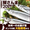 【季節限定】 徳用 極上鮮さんま 20本(1尾110g-120g)   さんま サンマ 秋刀魚 国産