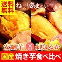 送料無料 人気焼き芋8本セット 国産 紅はるかの焼きいも 安納芋 [冷凍便]